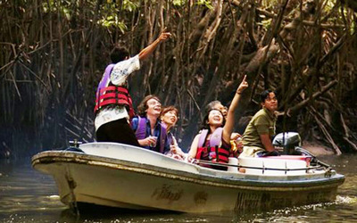 Langkawi: 1-Hour Private Boat Mangrove Tour up to 10 People