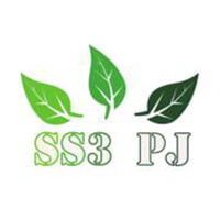 Ss3 PJ Guesthouse featured image