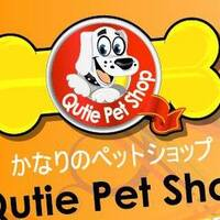 Qutie Pet Shop featured image
