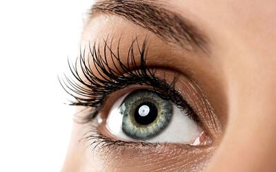 Natural Eyelash Extension + Evebrow Tinted for 2