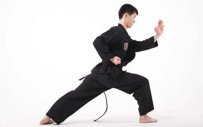1-Month Hapkido Class for 1 Person