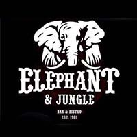 Elephant And Jungle featured image