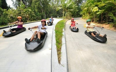Admission to Luge and Skyride, Return Cable Car Ride, and a Segway Fun Ride for 1 Child