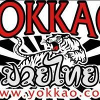 Yokkao Training Center featured image