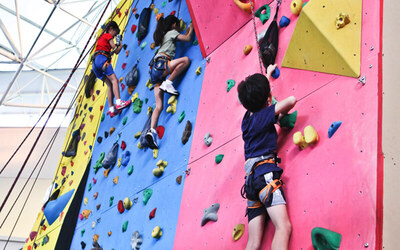 60-Minute Group Rock Climbing for 1 Child