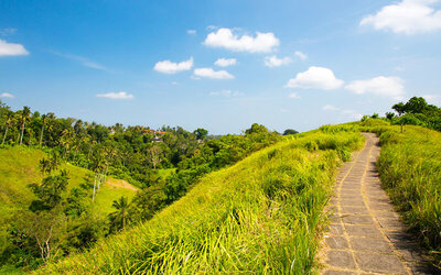Bali: 4D3N Campuhan Ridge, Gunung Kawi, and Ubud Tour + Hotel Stay for 1 Person