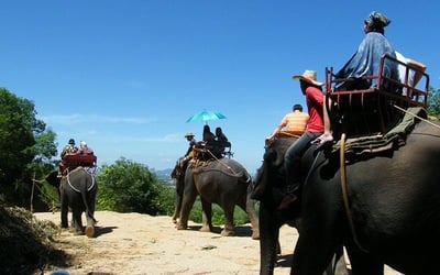 Phuket: Guided Tour + Coach Transfer